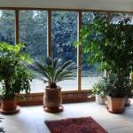 Sun room - inside